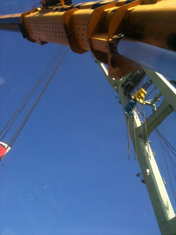 La grue BRABO 800 tonnes (B) Img_2437