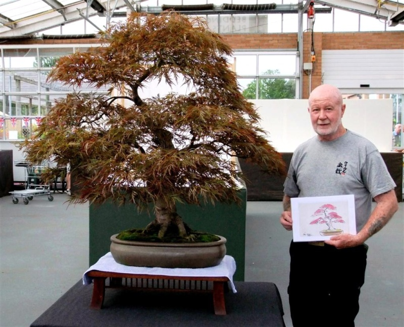 Wirral Bonsai Society Annual Members Show Result 2012 Dscf2310