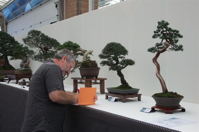 Wirral Bonsai Society Annual Members Show Result 2012 Dscf2612