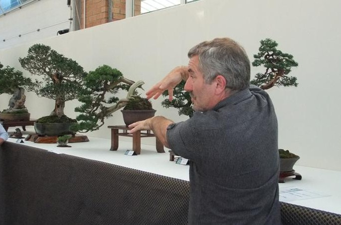 Wirral Bonsai Society Annual Members Show Result 2012 Dscf2811