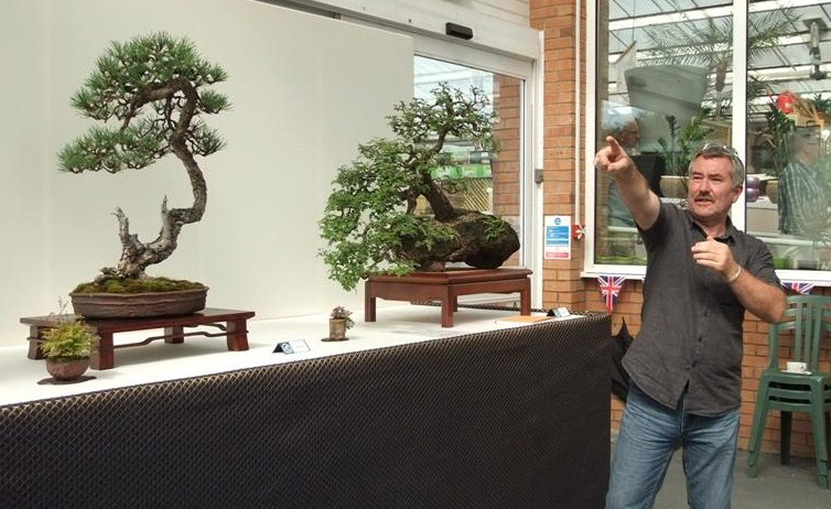 Wirral Bonsai Society Annual Members Show Result 2012 Dscf2813