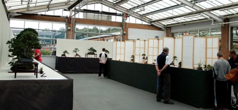 Wirral Bonsai Society Annual Members Show Result 2012 W-b-s_39