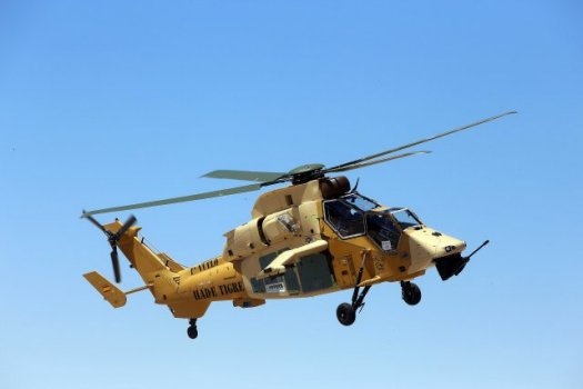 Le Tigre 166