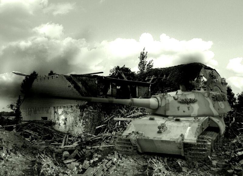 Le Tiger III et le Buffel - 1946/47 11576010