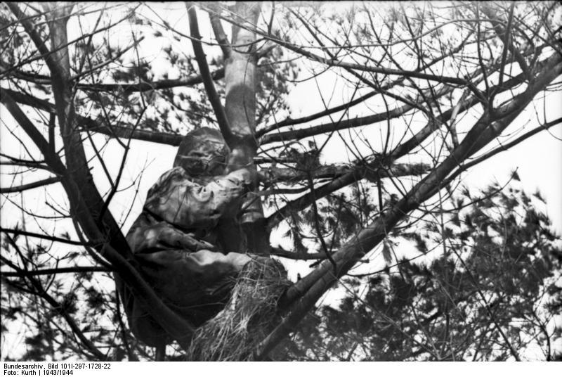 Reportage Bundesarchiv - Heer sniper 43/44 Bundes59