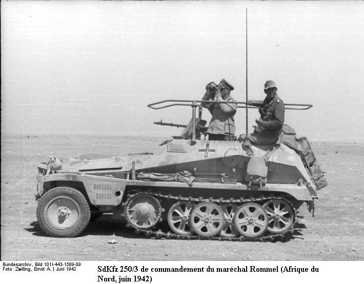 SdKfz 250 - Sonderkraftfahrzeug 250 Bundes76