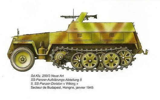 SdKfz 250 - Sonderkraftfahrzeug 250 Dfe07310