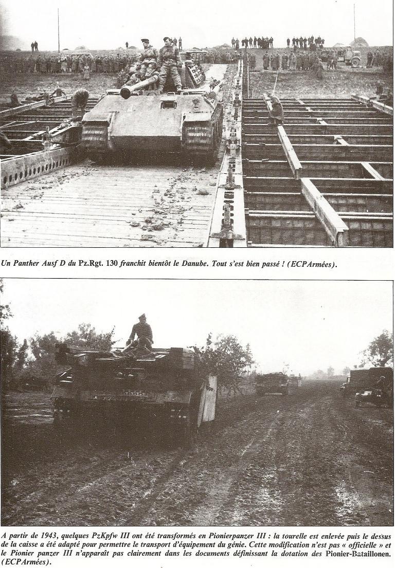 PIONIER BATAILLON - Pz.Div. type 44 Numari61