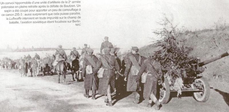 Bataille de Bautzen - Avril 1945 Numari81