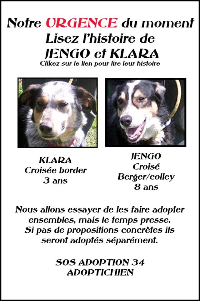 JENGO & KLARA Jengo10