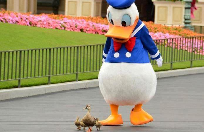 Quack quack... Captu122