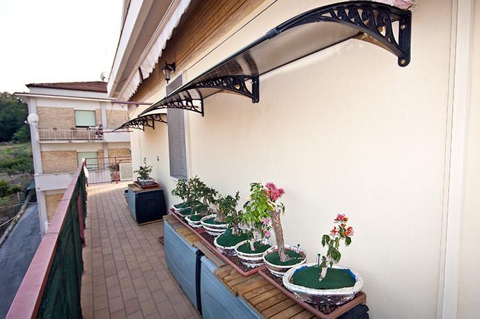 Dove coltiviamo i nostri bonsai - Pagina 13 057412