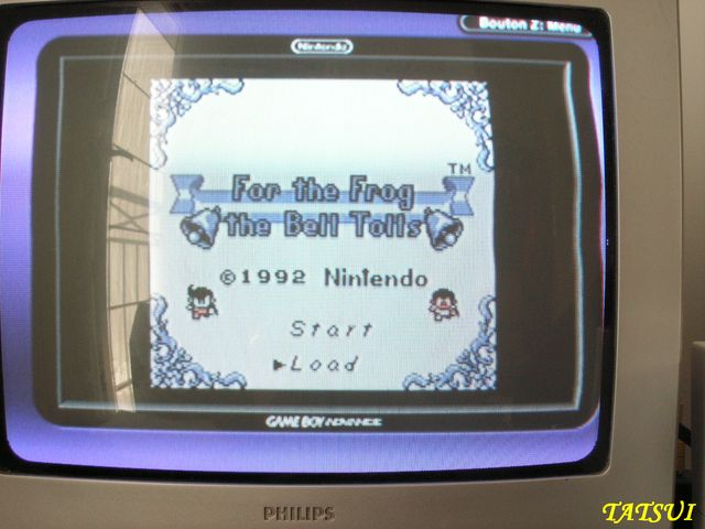 Mes réalisations, Game boy: For the frog the bell tolls Cartmo13