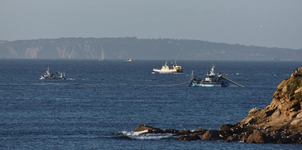 [VIE DES PORTS] Quelques bateaux de pêche (sur nos côtes Françaises) - Page 7 Dsc_0051