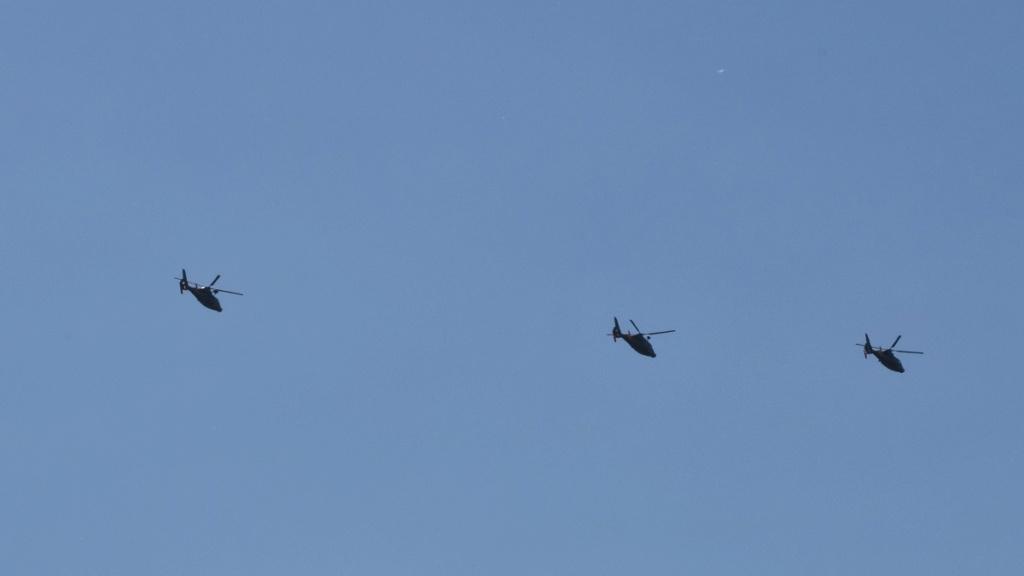[ Aéronavale divers ] Hélicoptère DAUPHIN - Page 6 Dsc_0942