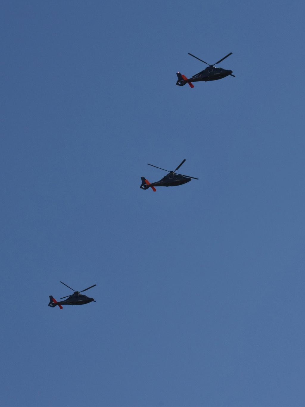 [ Aéronavale divers ] Hélicoptère DAUPHIN - Page 6 Dsc_0943