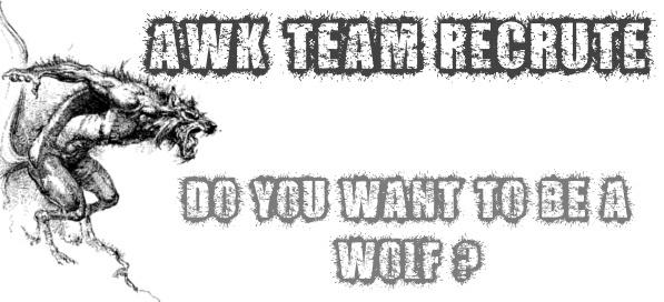AWK TEAM recrute !  Awk_te10