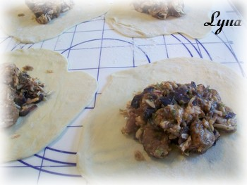 Calzones à la saucisse italienne et oignon caramélisé Calzon10
