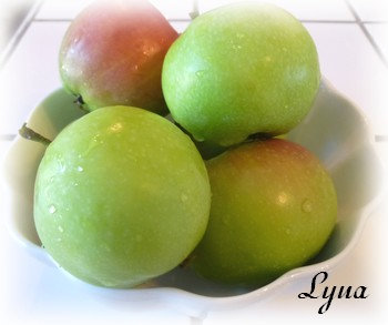 Gelée de pommes Gelae210