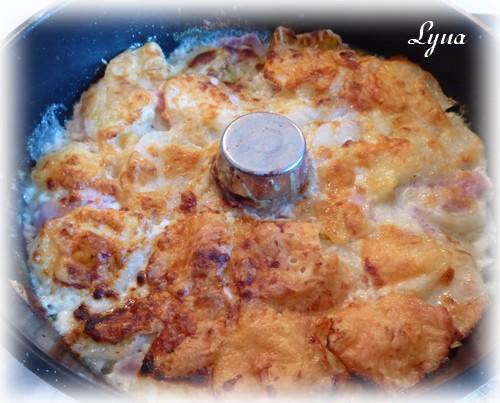Gratin de jambon blanc et pommes de terre - sans le bras central - Actifry Gratin13