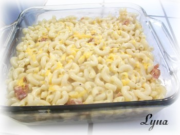 Macaroni au fromage tout-en-un Macaro10