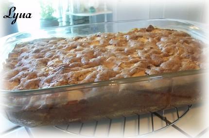 Gâteau pouding aux pommes et sauce caramel Poudin10