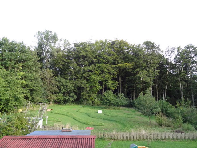 Aménagement jardin 1.1 Dsc02110