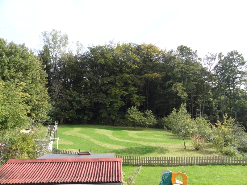 Aménagement jardin 1.1 Dsc02210