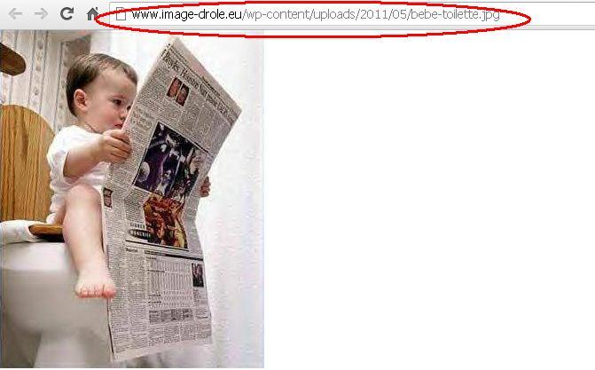 Tuto pour les nuls : poster ( ou héberger ) une image ( ou une photo ) Image_10