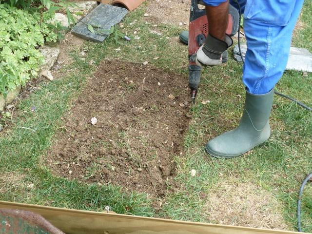notre préparation hibernation  P1050511