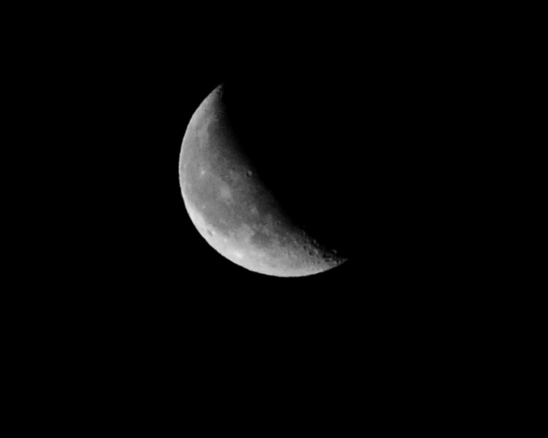 Nuit des étoiles ... Lune10