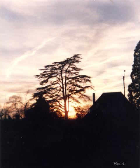 27 Le soleil du lever au coucher - Page 2 0510