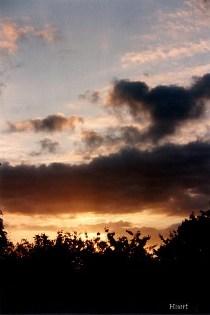 27 Le soleil du lever au coucher - Page 2 1010