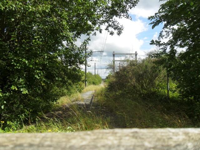 la vieille gare de hombourg (ligne 38) 1510