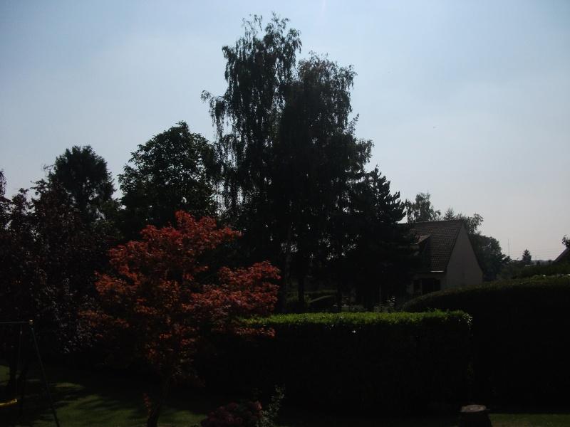 2012: le 26/08 à 21h00 - Une soucoupe volante - croisilles (62)  - Page 5 Dscf9710