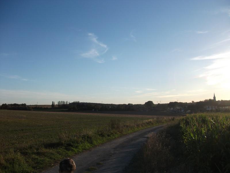 2012: le 26/08 à 21h00 - Une soucoupe volante - croisilles (62)  - Page 9 Dscf9712