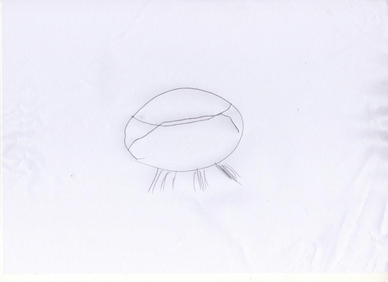 2012: le 26/08 à 21h00 - Une soucoupe volante - croisilles (62)  - Page 6 Ovni7314