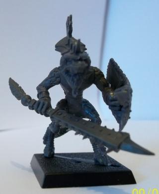 L'armée de Shadow Face 100_0319