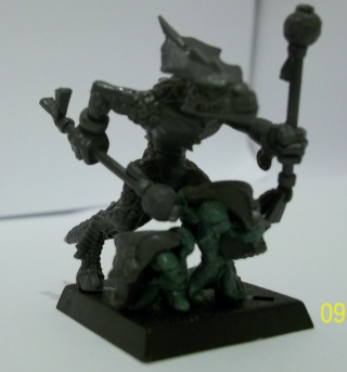 L'armée de Shadow Face 100_0320