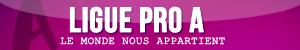 Ligues : bannières & icônes Pro_a10
