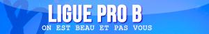 Ligues : bannières & icônes Pro_b10