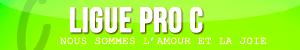 Ligues : bannières & icônes Pro_c10