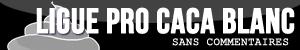 Ligues : bannières & icônes Pro_ca10