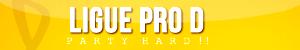 Ligues : bannières & icônes Pro_d10