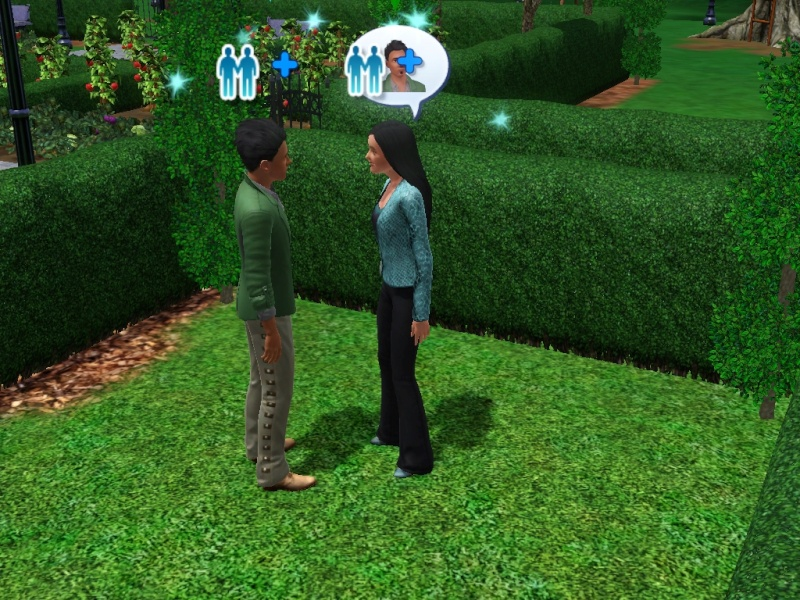 Susinok's Moore Legacy Family - Hidden Springs Screen75