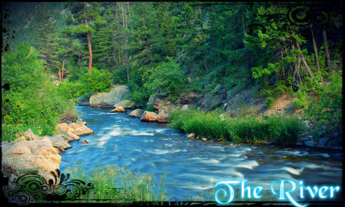 The River      The_ri10