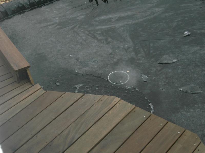 Qui a dit qu'il ne faisez pas froid en Alsace Pict0014