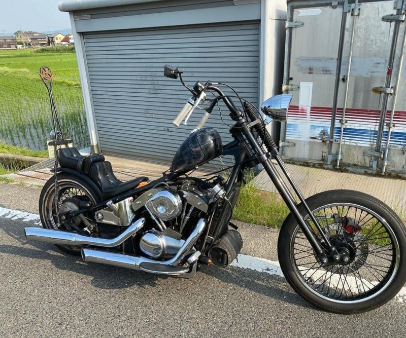 800 - chopper vn 800 vu sur le net  - Page 2 10254610