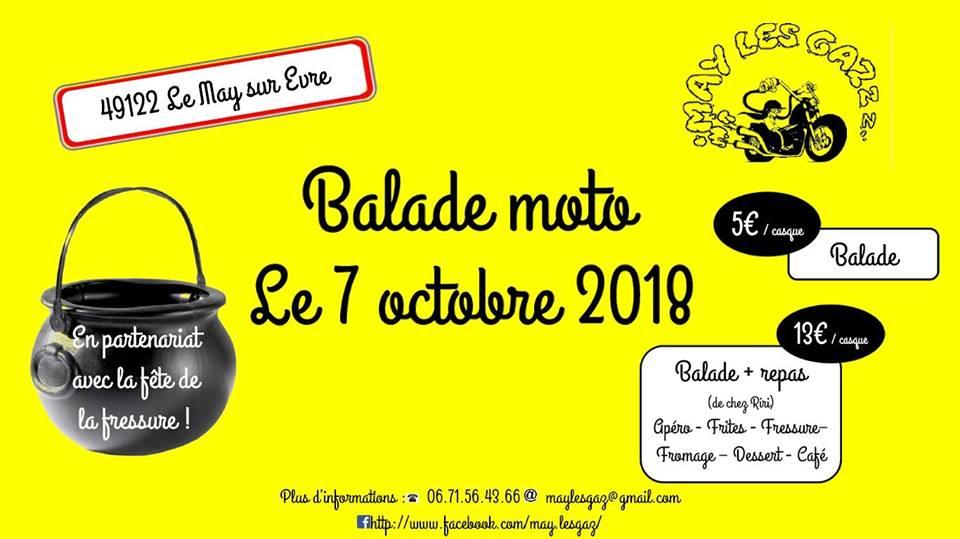 Balade -  Dimanche 7 octobre 2018 - Le May sur Evre - (49122) 18090710