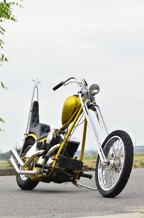800 - chopper vn 800 vu sur le net  - Page 2 Aa7_3211